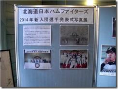 北海道日本ハムファイターズ新入団選手発表式写真展示2