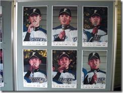 北海道日本ハムファイターズ新入団選手発表式写真展示4